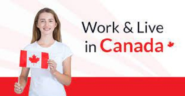 Photo of How To Easily Get Canadian Working Visa
